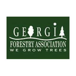 Timber Purchasing & Harvesting Southeast, Selling Trees